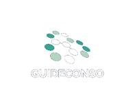 Guide Conso